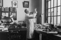 Александр Флеминг, открывший пенициллин.