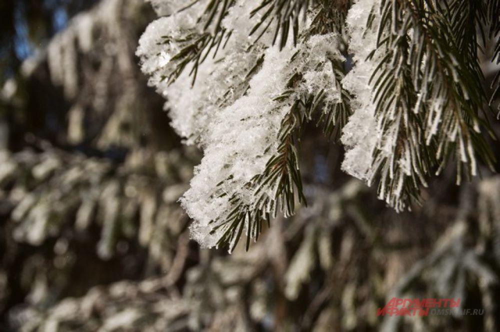 Зима в Омске.