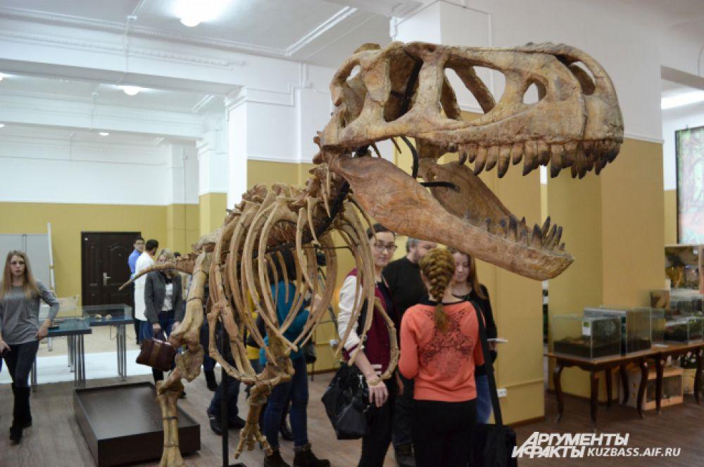 У настоящих скелетов черепа такие тяжёлые, что их просто не выставляют, а делают копии из дерева. Подлинники в музеях всегда лежат под стеклом.