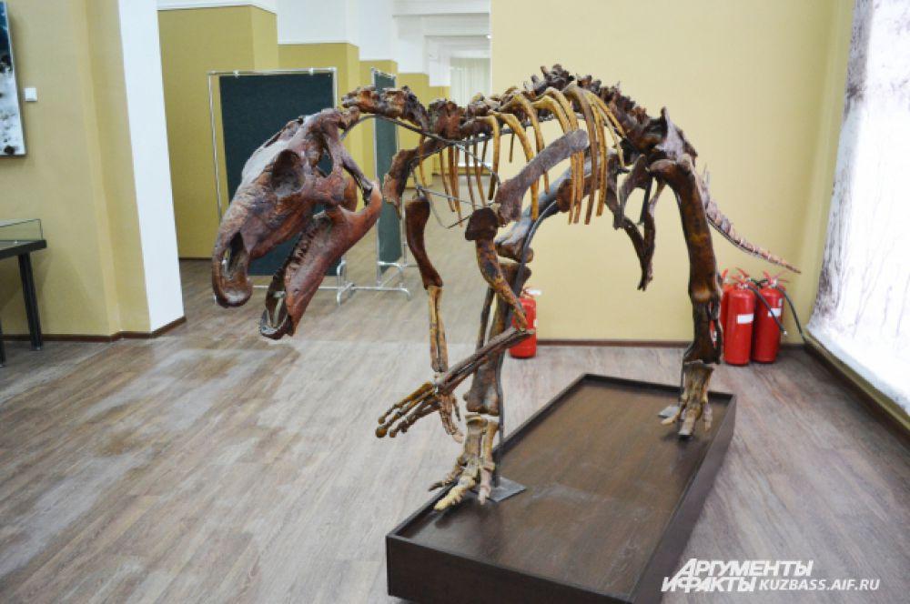 Копия скелета. Настоящий поставить нельзя, потому что ему придётся сверлить кости, вставлять толстую арматуру, а потом следить, чтобы эта многотонная конструкция не рухнула.