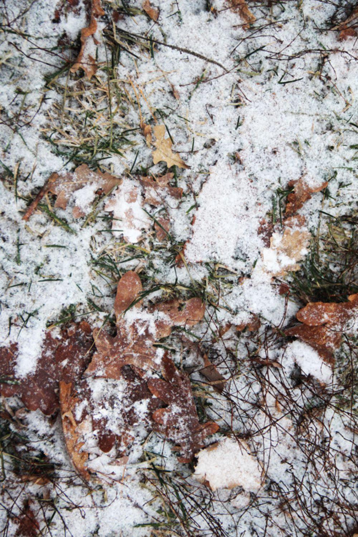 Толщина снежного покрова пока позволяет не брать с собой лыж