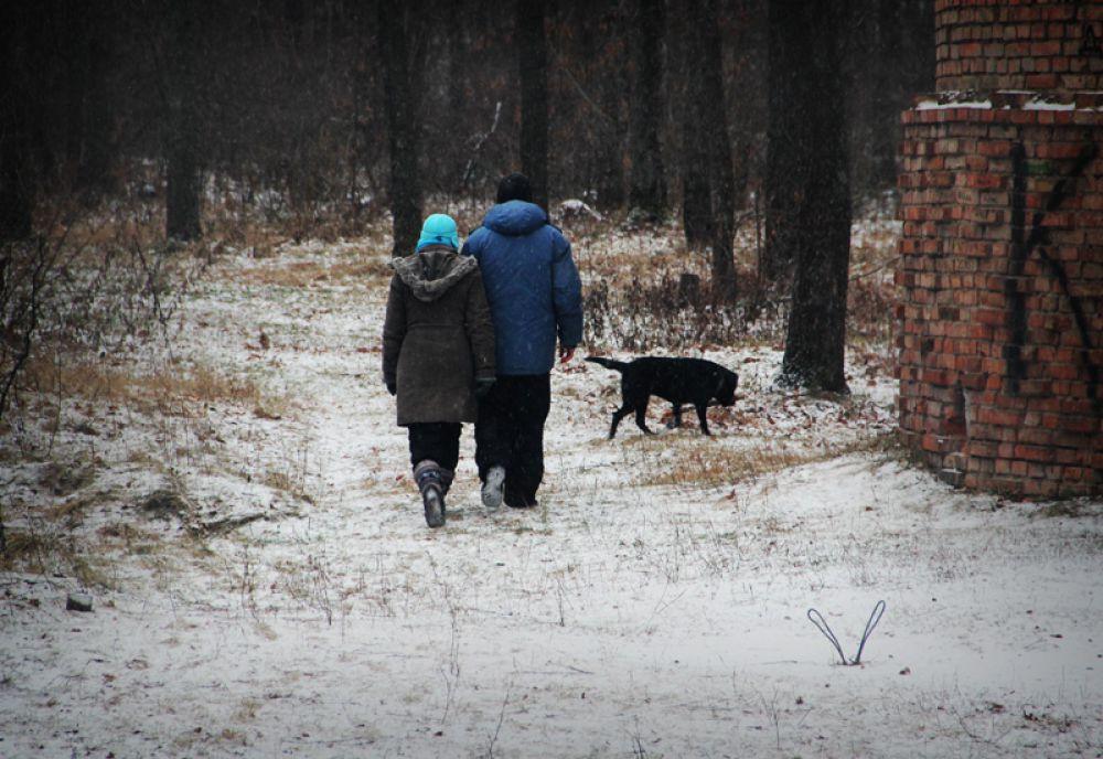 Уходя гулять по лесу, не забывайте: темнеет нынче рано…
