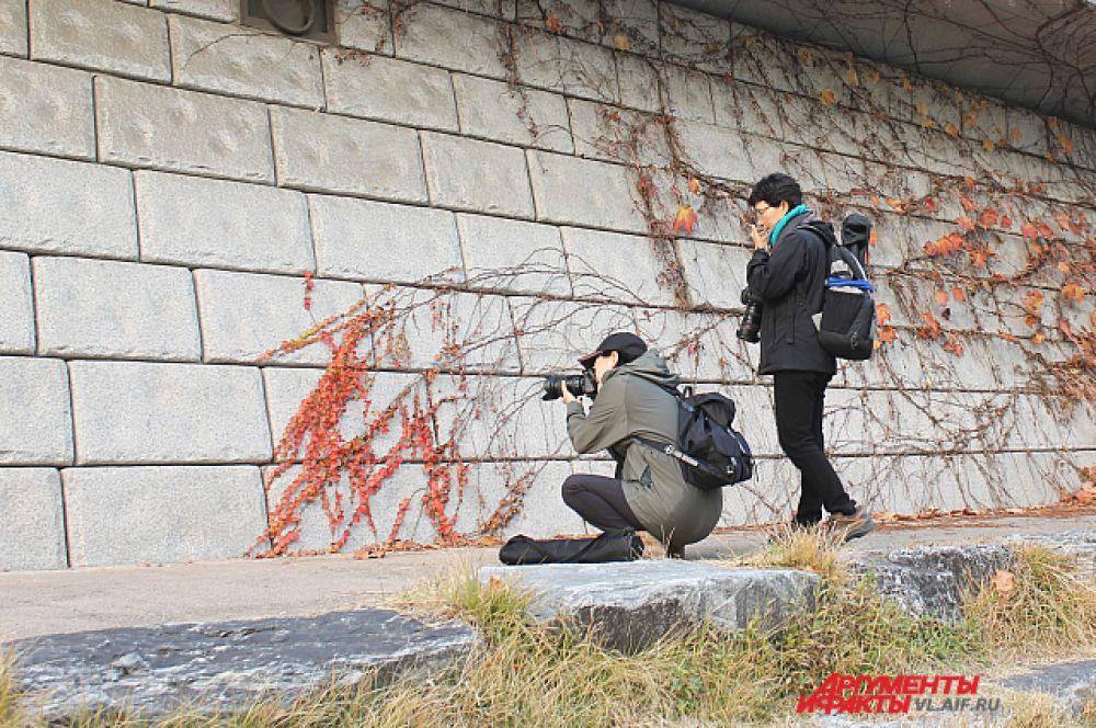 Набережная в центре Сеула. Фотографы нашли что-то интересное.