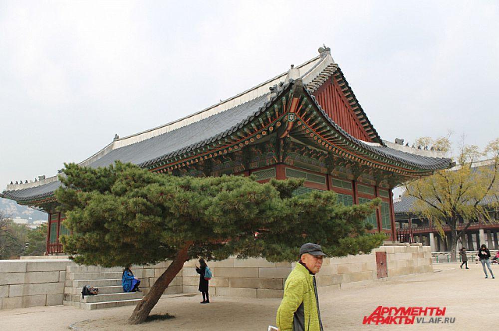 Деревья должны были удивлять посетителей дворца.