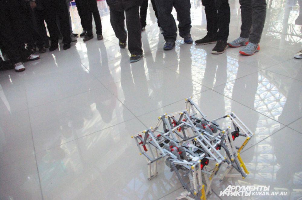 Робот-паук со встроенными датчиками движения. Если на него замахиваешься ногой, спешно уползает в сторону.