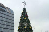 Новогодняя ёлка у Золотого моста.