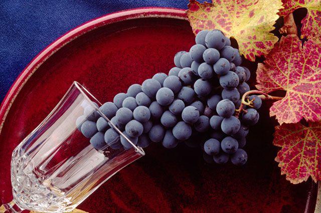 Виноград неизвестного происхождения не пустили в Омскую область.