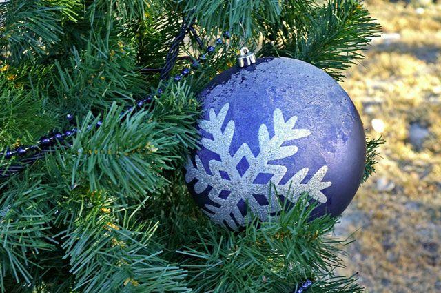 Привычную елку в саду «Сибирь» заменят ледяной.
