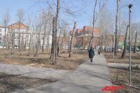 Омск превратится в сад после реализации проекта озеленения.