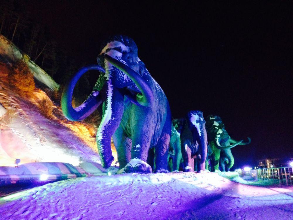 Еще одной яркой особенностью предновогоднего Ханты-Мансийска является Археопарк. Скульптуры первобытных животных подсвечиваются прожекторами, и создается впечатление, что они двигаются, живут своей жизнью.