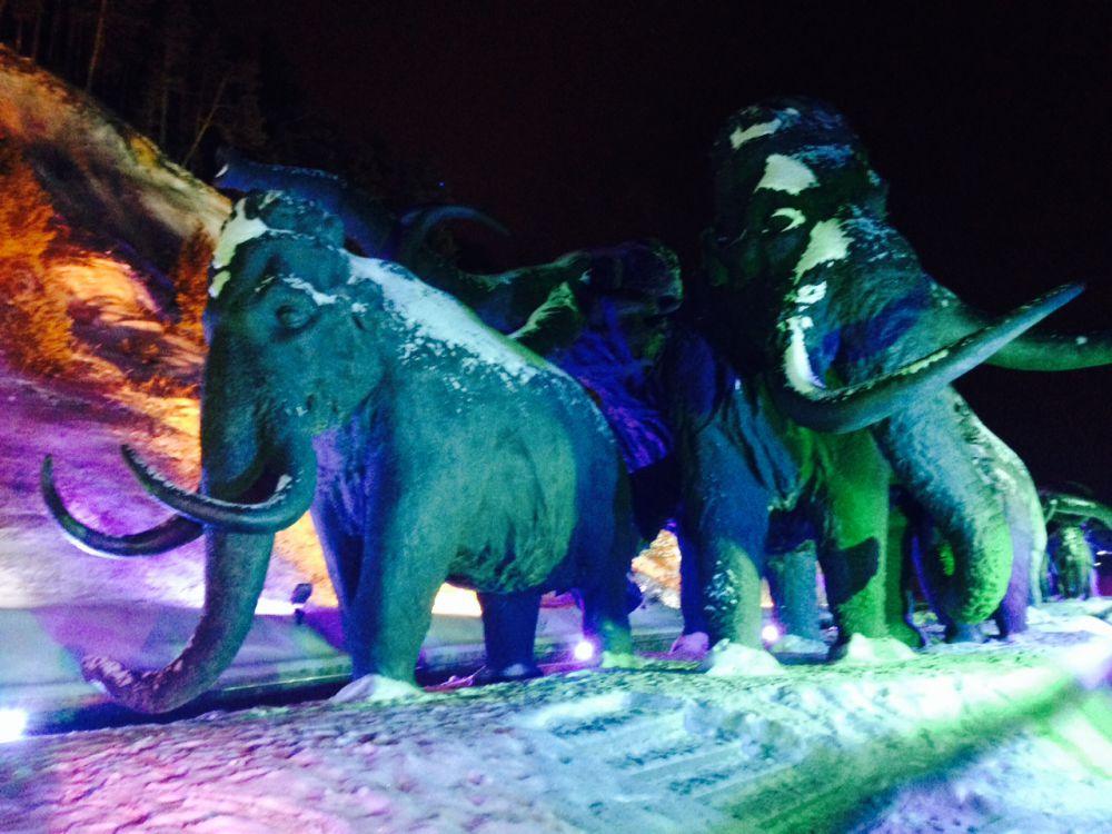 Огромные мамонты в снеговых шапках сверкают отполированными бивнями.