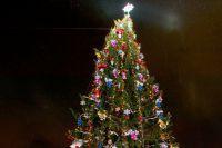 Главная городская елка в Омске появится в сквере им. Дзержинского.