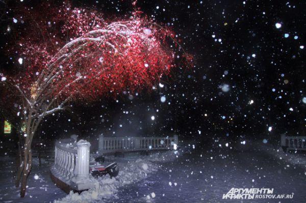 Каждую минуту декабря природа создаёт новые шедевры городской зимы.
