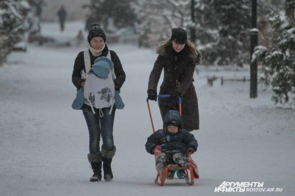 У природы нет плохой погоды: прогулки - по расписанию.