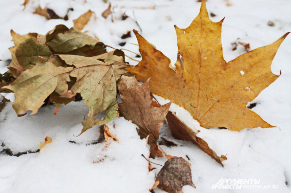 Первый снег в Ростове-на-Дону выпал 26 ноября.
