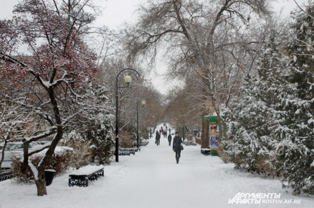 В зимнем парке тополя так грустны...