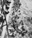 Линкор «Бисмарк» погиб в годы Второй мировой войны. За ним велась целая охота. Но вопрос о причинах, вызвавших гибель корабля, долгое время являлся предметом дискуссий: торпеды ли с «Дорсетшира» нанесли смертельное повреждение, или же корабль затонул в результате действий трюмной команды, получившей приказ открыть кингстоны. Существует мнение, что остойчивость корабля была нарушена совместным действием этих факторов. Как бы то ни было, подводная экспедиция Д. Камерона к затонувшему кораблю показала, что кингстоны корабля открыты.