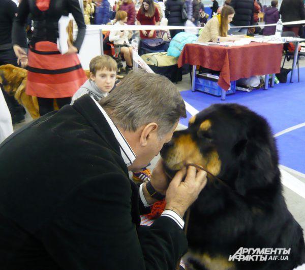 На выставке в Киеве собаки станцевали джайв, поп-данс и ...