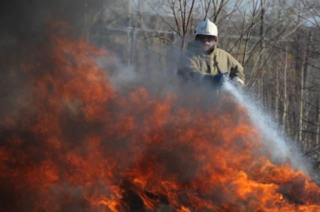 Пожарные справились с огнем в троллейбусе за 8 минут.