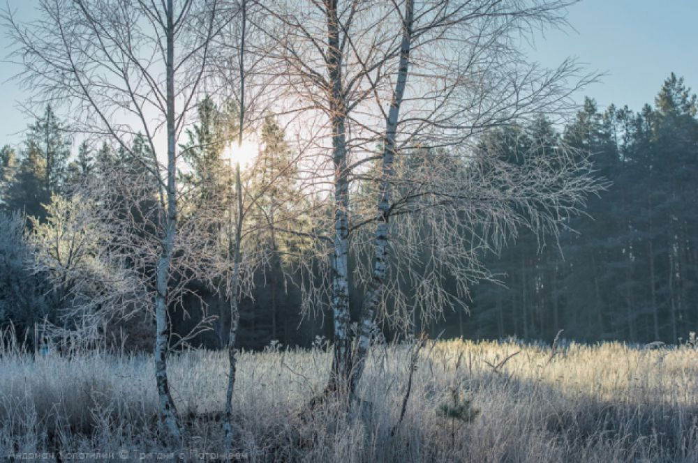 Снегопад упорно обходит стороной Брянск. И когда ждать снега, затрудняются сказать даже синоптики.
