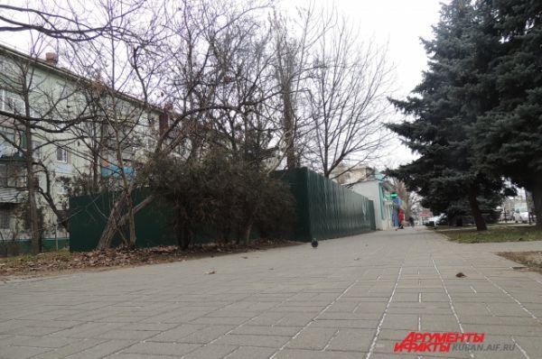 В Краснодаре сугробов еще не наблюдается. Хотя на тротуар можно заметить легкую наледь, а на жухлой листве тоненький иней.
