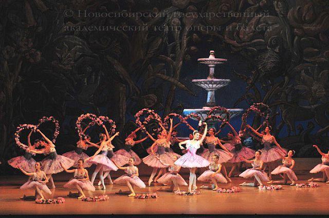 Выступление Новосибирского государственного театра оперы и балета.