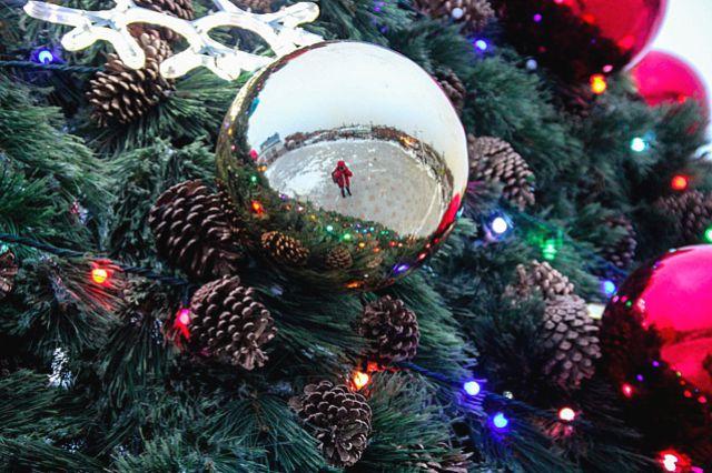 Благотворительные ёлка и ярмарка пройдут на Рождество.