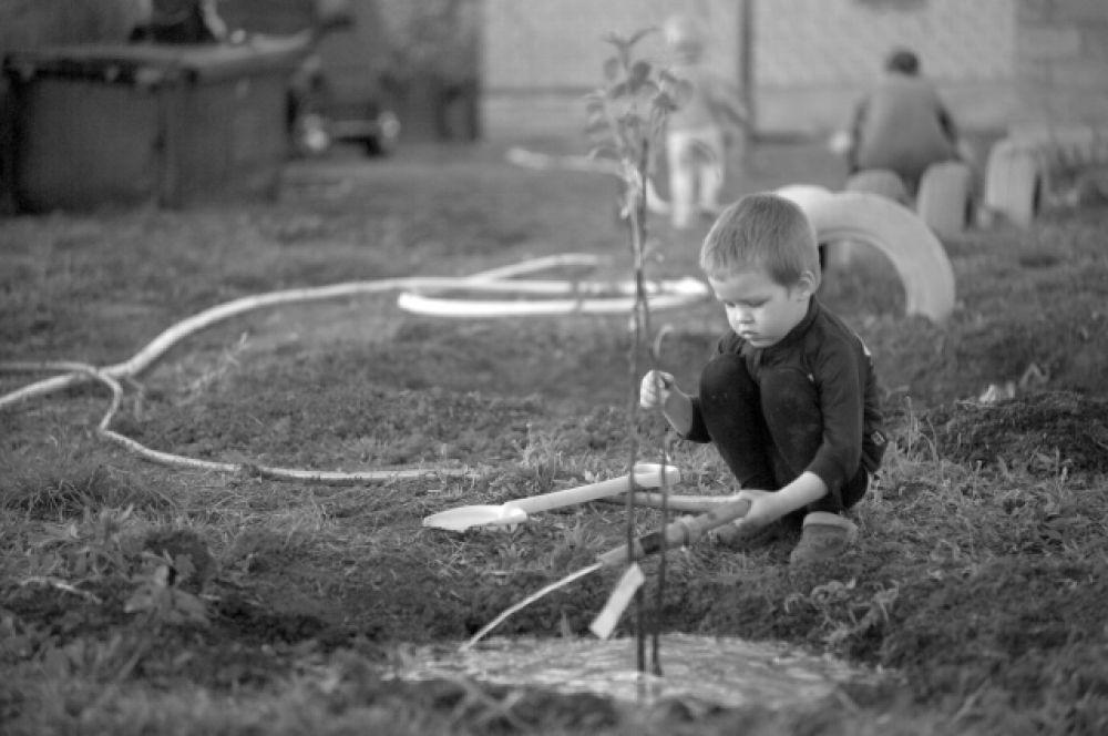 Дети Григория помогают ему по хозяйству.