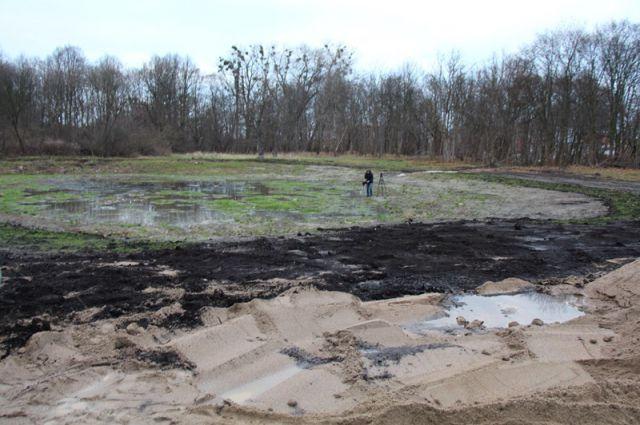Осушение территории Макс-Ашманн-парка провели за счет средств гранта Евросоюза.