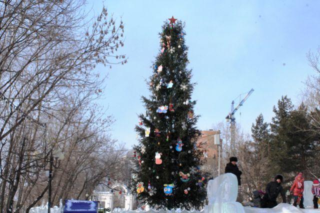 В Омске выберут лучшую дворовую ёлку.