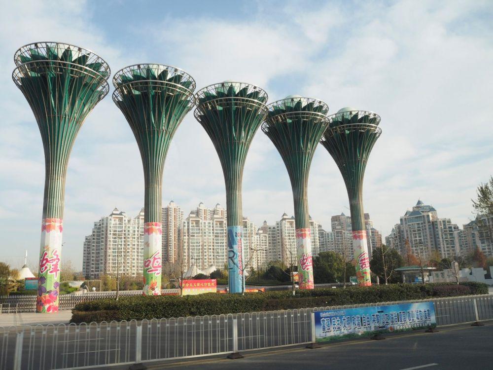 Город Хэфэй – столица густонаселённой китайской провинции Анхой. В этом городе около 6 млн жителей. Здесь расположены 30 вузов, 190 научно-исследовательских институтов, древние оперные школы.