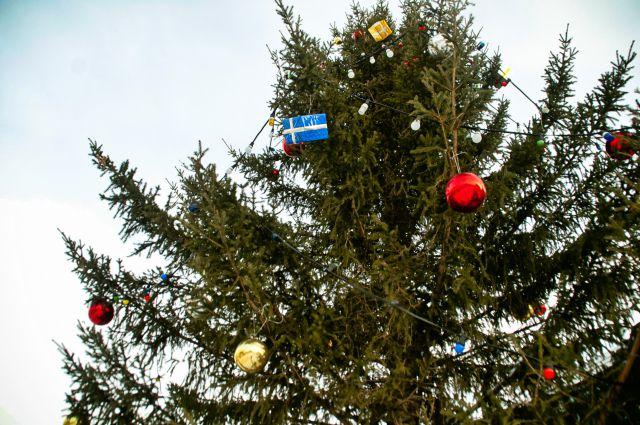 Главная городская елка Омска в высоту составляет 24 метра.