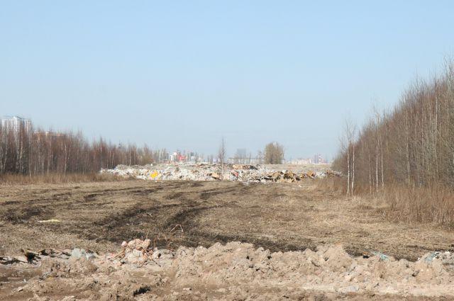 Свалка вдоль Московского шоссе в посёлке Шушары устранена.