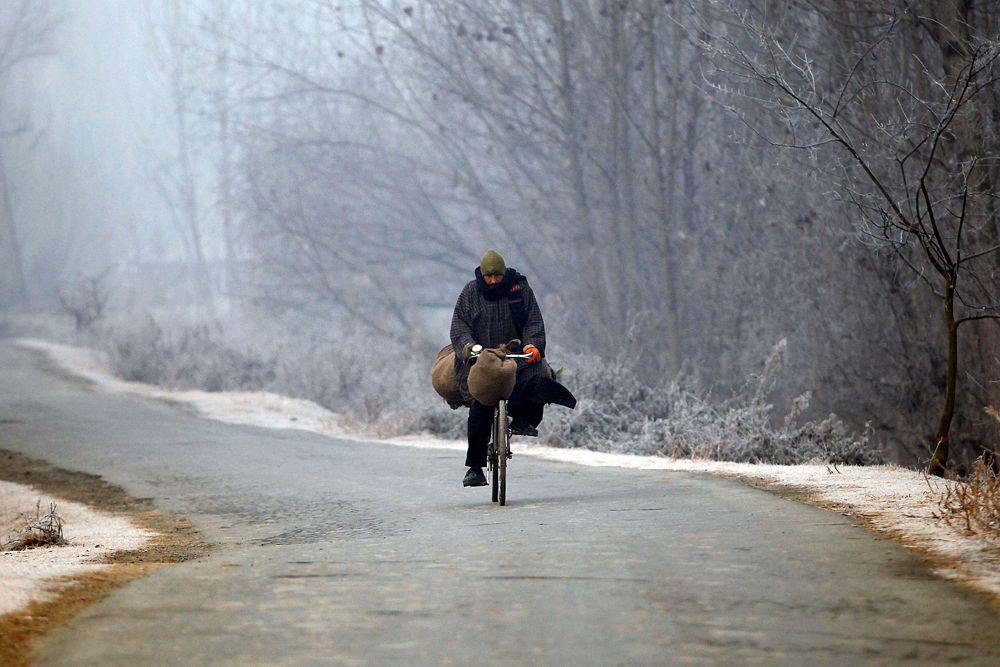 Зимнее утро в городе Сринагар. Температура в среду упала здесь до -3,8 градусов по Цельсию.