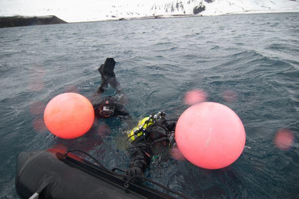 У экспедиции «Антарктида-100» объектом изучения стали не воды Антарктиды, не гидробиология океанов, окружающих антарктический материк, а исследования, которые дайверы проводили над собой: речь идет о разработке методик глубоководных погружений с использованием обычного снаряжения в экстремальных условиях.