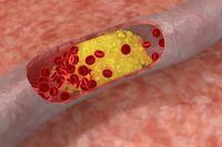 Прививки отрака. Как они работают?   Здоровая жизнь   Здоровье   Аргументы и Факты