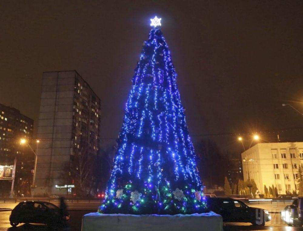 Пушистая елочка высотой всего 10 метров в Святошинском районе сделана из искусственных и живых «лап»