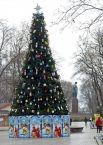 Главная елка Шевченковского района – самая маленькая по высоте (всего лишь 8 метров)