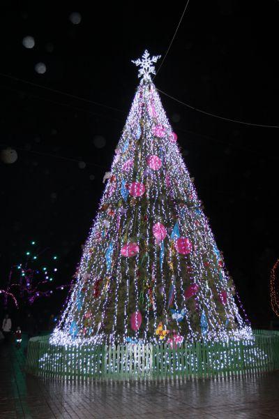 В Голосеевском районе решили, что главным деревом в Новый год должна стать 12-метровая елка
