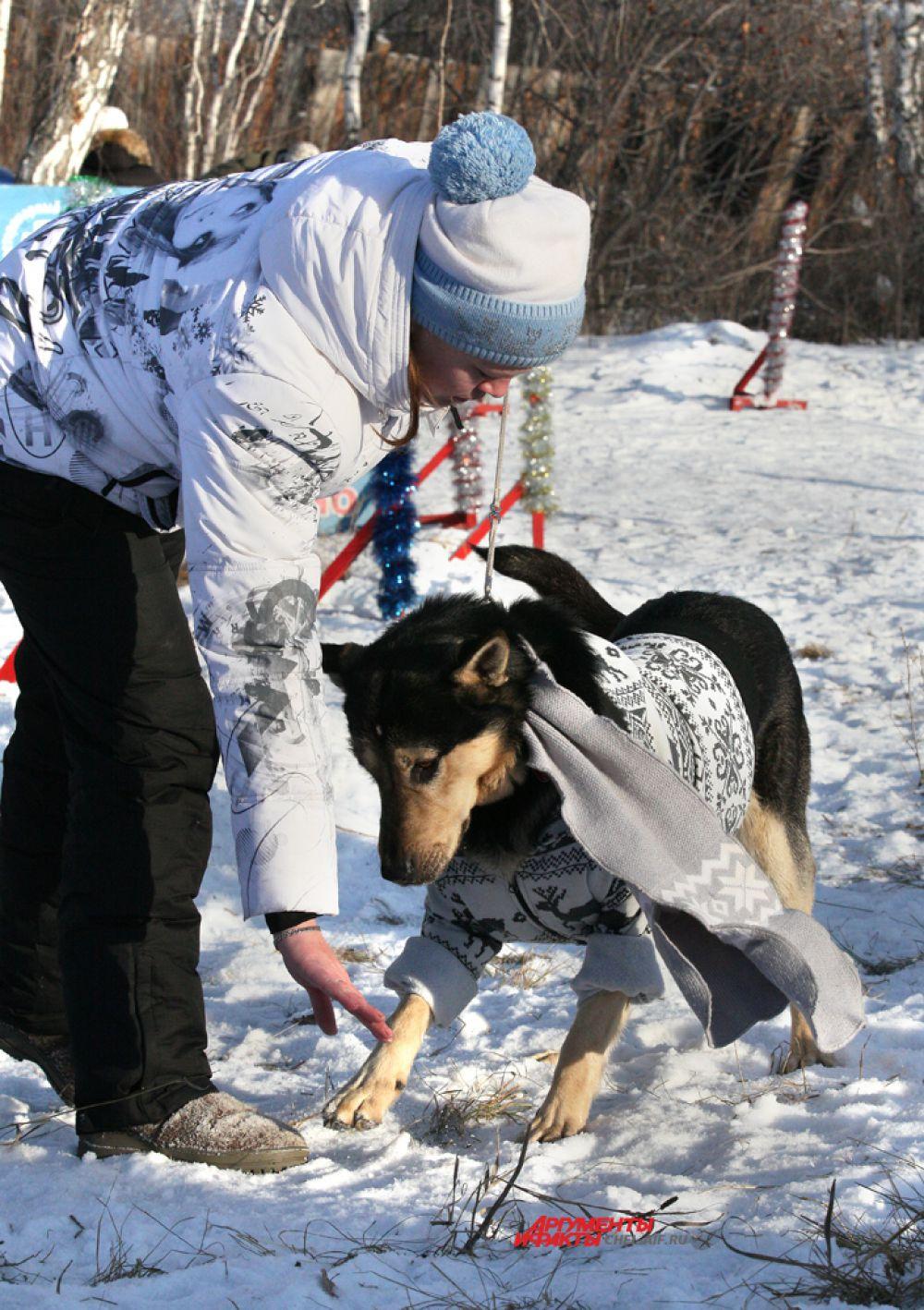 Светлана Давыдкина и восточно-евопейская овчарка Граф