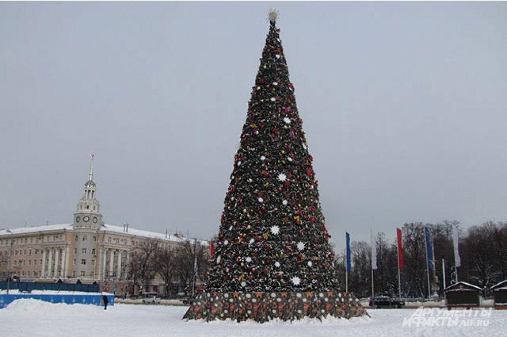 Главная елка Воронежа в этом году получилась очень нарядная.