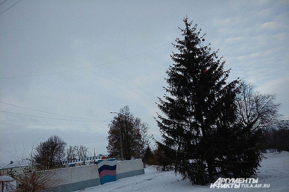 Жители Волово тоже могут провести новогодние праздники возле городской елки