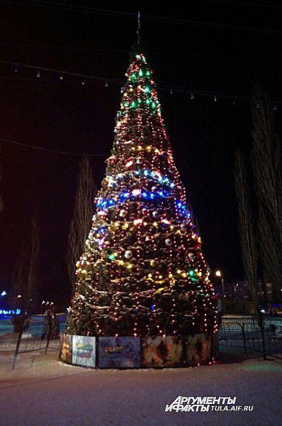 25 декабря на открытии главной городской елки в Узловой развернулось большое новогоднее представление