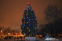 """Еще накануне вечером елка стояла на привычном месте - в сквере """"Крылатые земляки""""."""