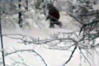 Снежный человек.