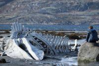 Фильм «Левиафан» вызвал бурное обсуждение в Омске