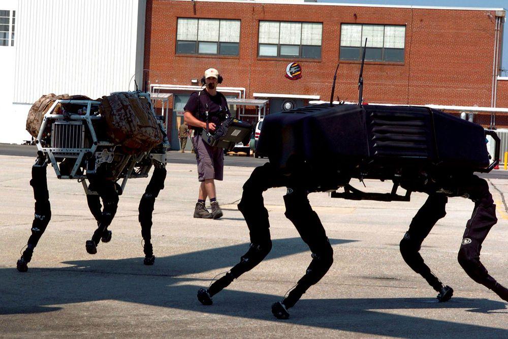 Предполагается, что роботы BigDog смогут переносить снаряжение и помогать солдатам на территории, где не способен передвигаться обычный транспорт. Вместо колёс и гусениц BigDog использует четыре ноги. В ногах находится большое количество разнообразных сенсоров. Также у BigDog имеется лазерный гироскоп и система бинокулярного зрения. Длина робота — 0,91 метр, высота 0,76 метра, вес 110 килограммов. В настоящее время он способен передвигаться по труднопроходимой местности со скоростью 6,4 км в час, перевозить 154 кг груза и подниматься на 35 градусную наклонную плоскость.