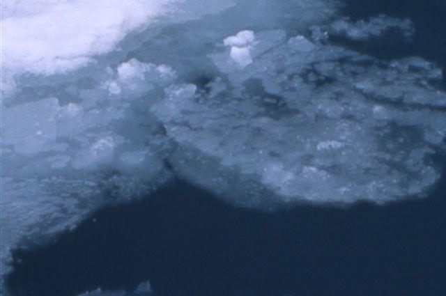 Тонкий лед опасен!