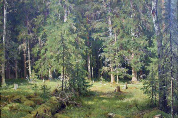 «Лес», 1895 год.