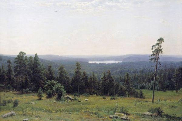 «Лесные дали», 1884 год.